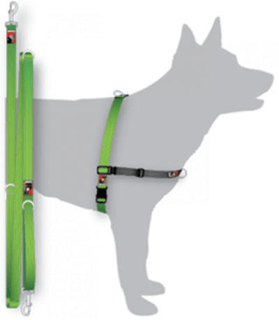 Black Dog Balance Training Pack Medium