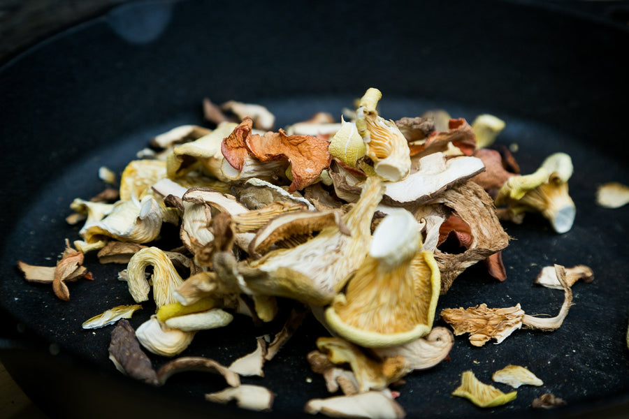 Dried Mushrooms Information