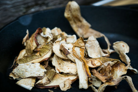 Cep, Porcini mushroom, Boletus Edulis, Penny Bun, King Bolete, Porcino, Steinpilz, Cèpe, dried exotic mushrooms, dried mushroom, mushroom supplier, buy mushrooms, Porcini (Ceps), uk wild mushroom,