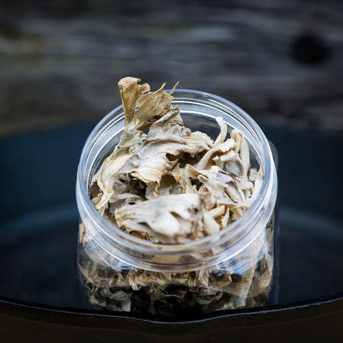 dried mixed maitake mushrooms hen of the woods UK