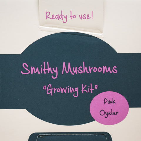 Grow Your Own Oyster Mushrooms - Exotic Grow Kit - Pink