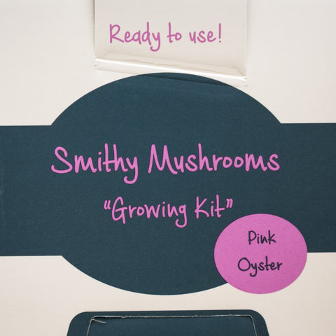 Grow Your Own Oyster Mushrooms - Exotic Grow Kit - Grey