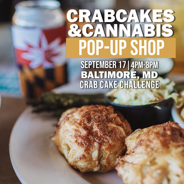 Crabcakes & Cannabis visits the 6th Annual Crabcake Challenge!