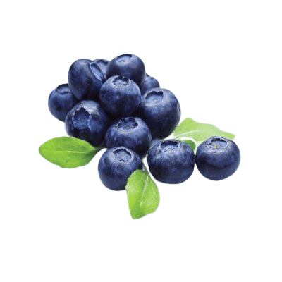 Dark, Rich Blueberries On White Background