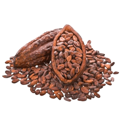 2 Open Brown Cacao With Cacao Seeds Spilling Out Of Them
