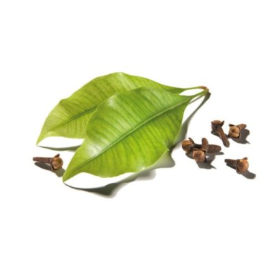 Clove Leaves & Brown Cloves On White Background