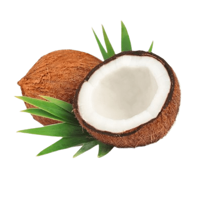 Brown Cracked Coconut Halves Exposing White Inners Amongst Green Palm Leaves