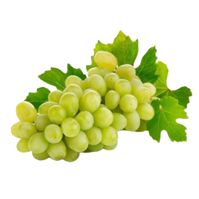 Beautiful Plump Green Grapes With Grape Leaves On White Background