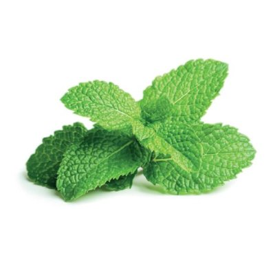 Bright Green Peppermint Leaves