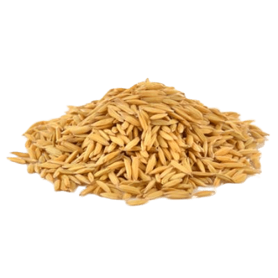Rice Bran Seeds On White Background