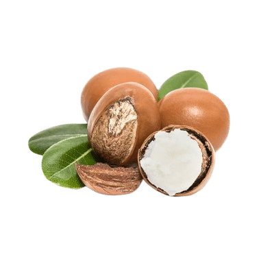 A Portion Of Whole Brown Shea Nuts Alongside A Split White Creamy Nut & Green Leaves