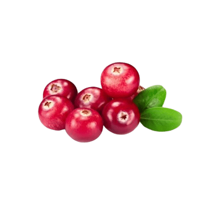Seven Deep Red Cranberries Alongside Two Tiny Cranberry Leaves