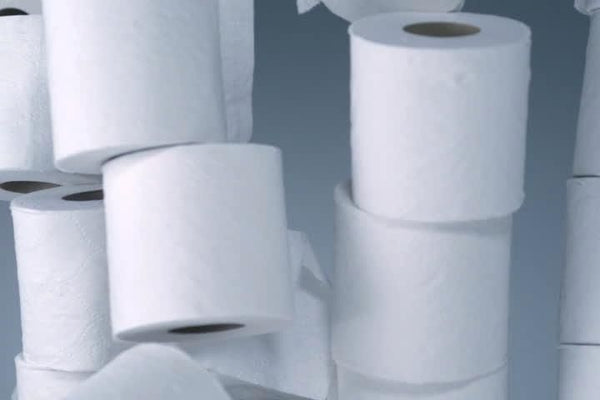 Toilet Roll Tower