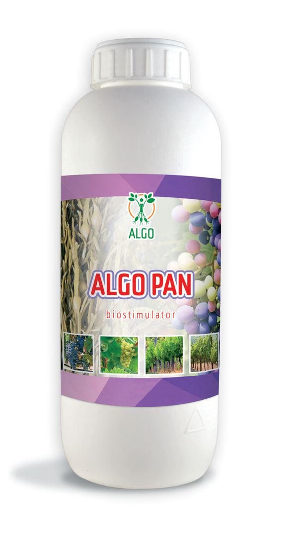 Algo Pan 250ml