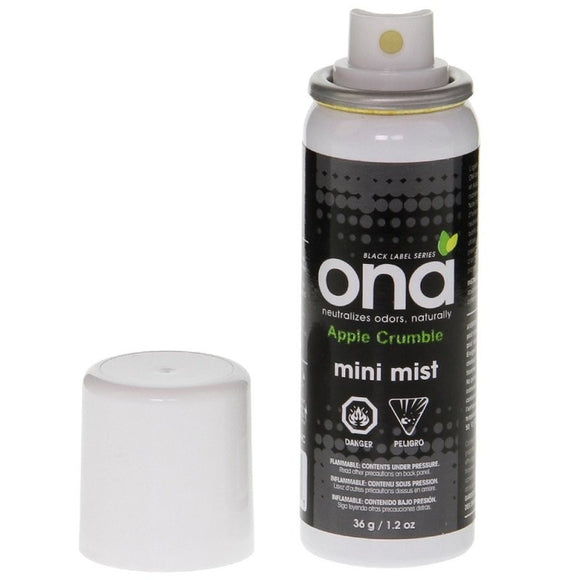 ONA mini mist 36gr- Apple Crumble
