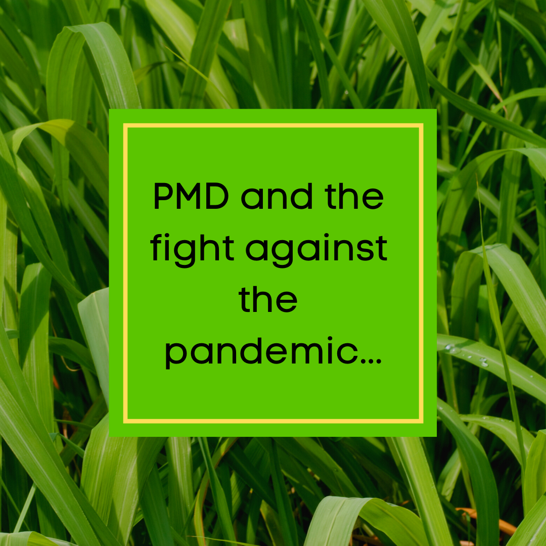 PMD and the fight against the pandemic? Tell me more!