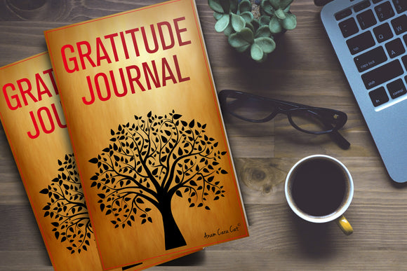 Gratitude Journal and Lesson Plans: Secondary FREE