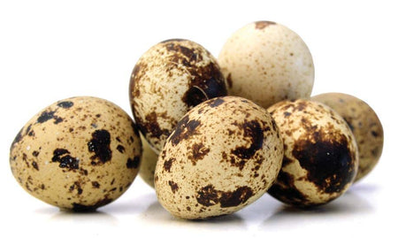 Quail Eggs and Allergies