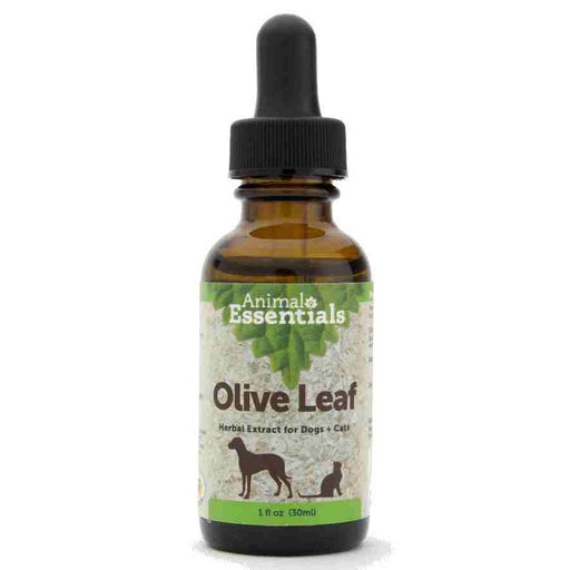 Animal Essentials Olive Leaf - 2oz