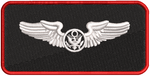 Enlisted Aircrew Wings  (17 ATKS)
