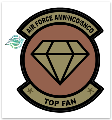 AIR FORCE AMN/NCO/SNCO TOP FAN- Sticker