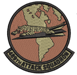 489th Attack Squadron -  OCP