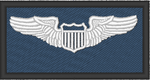 Pilot Wings (42 ATKS) - Reaper Patches