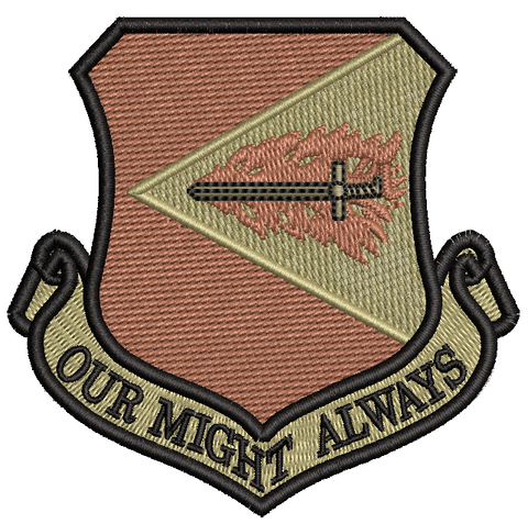 355th Fighter Wing - OCP