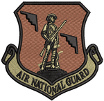 Air National Guard - B-2 OCP