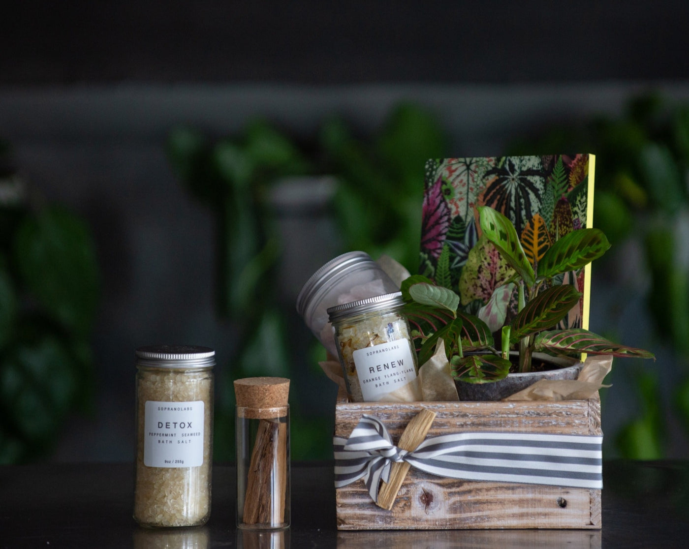 Flower Bar Mystic Bounty Box is a wooden gift box that is filled with a potted plant, a reflection journal, a jar of rose quartz, your choice of bath salts, and a jar of palo santo smudge sticks.
