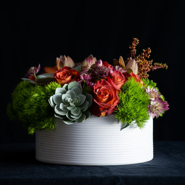 Spiced Pear Mimosa arrangement is a modern low lush arrangement in a white ceramic vessel. The flowers include roses, specialty stems, greenery, and succulents. Colors: Reds, Purples, Taupes