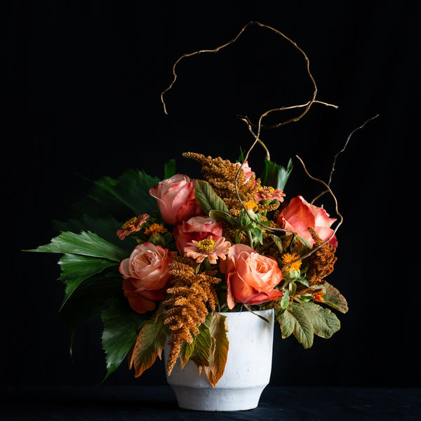 Caramel Toddy arrangement features specialty roses, fall stems, greenery, and willow branch. The arrangement is in a white concrete container. Colors: Reds, Browns