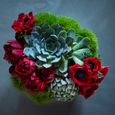 Low, lush arrangement of greens, red or burgundy stems, and succulents white ceramic vase