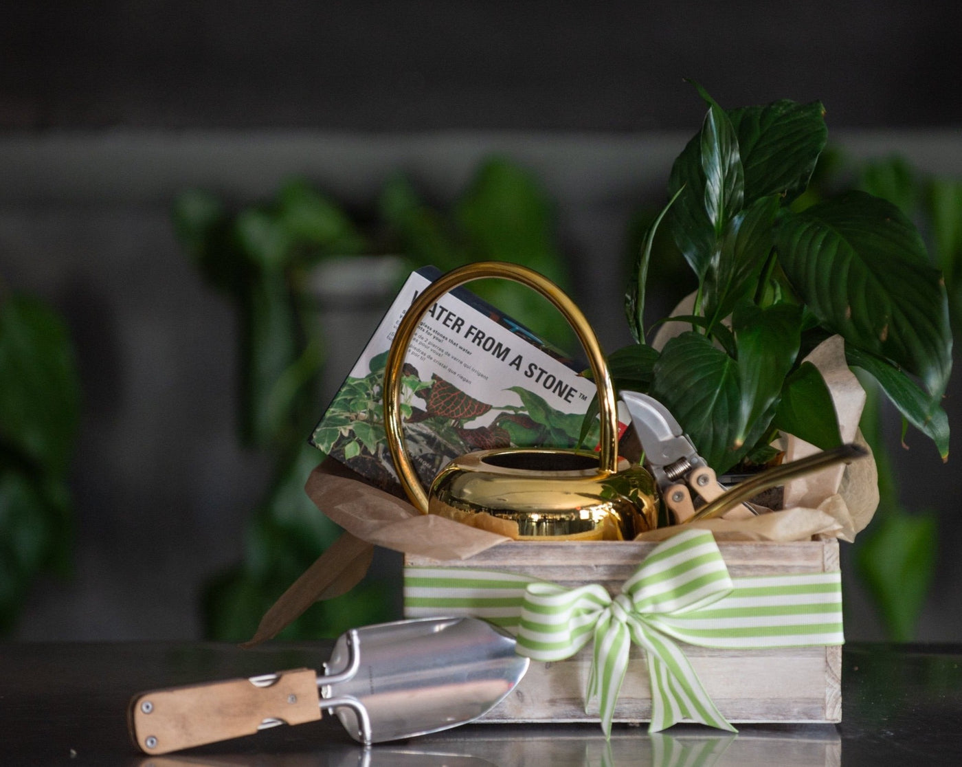 Garden Bounty Box is a wooden gift box filled with a gold watering can, gardening tools, water from a stone, and a potted plant, finished with a bow