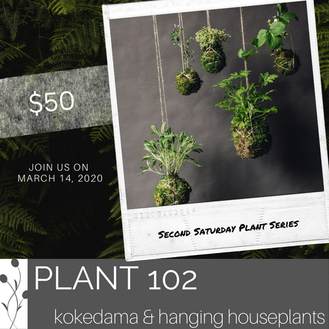 Saturday Plant Series, March 14th @ 1pm