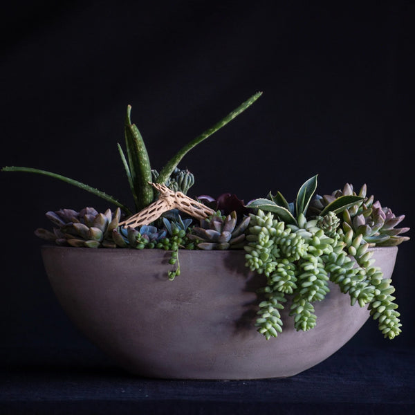 Succulents and cactus planted in a ceramic boat vessel finished with a cholla branch.
