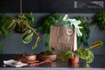 The Forest Plant Project, pictured is a finished Kokedama and the ingredients