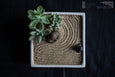Ceramic square planter with zen sand and buddha