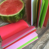 TRAVELERS NOTEBOOK INSERT - WATERMELON