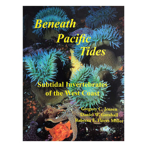 Beneath Pacific Tides: Subtidal Invertebrates of the West Coast