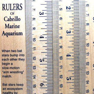 Rulers of Cabrillo Marine Aquarium