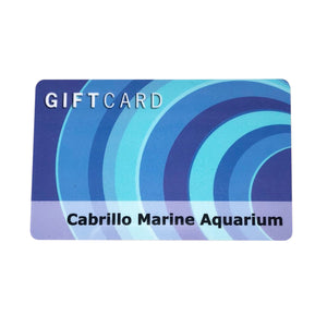 Cabrillo Marine Aquarium Gift Card $50
