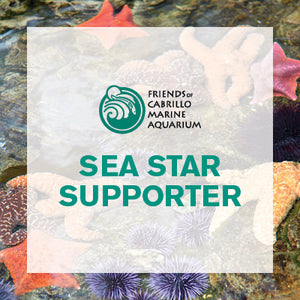 Sea Star Supporter