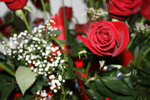 Doz Red Florist Colour Choice  Bouquet ( Premium )