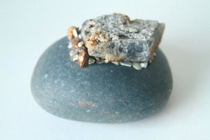 Pet Rock with Minerals