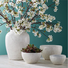 "Faux Quince Blossom Branch | 48"" Bundle of 2"