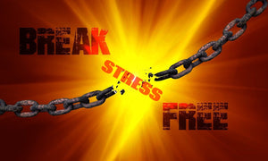 Stress Management Audio Program - MP3