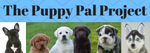 Puppy Pal Project