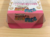 de3240 Xandra no Daibouken Sandora Whirlo BOXED SNES Super Famicom Japan