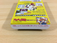 ua8897 Arle no Bouken Mahou no Jewel Puyo Puyo BOXED GameBoy Game Boy Japan